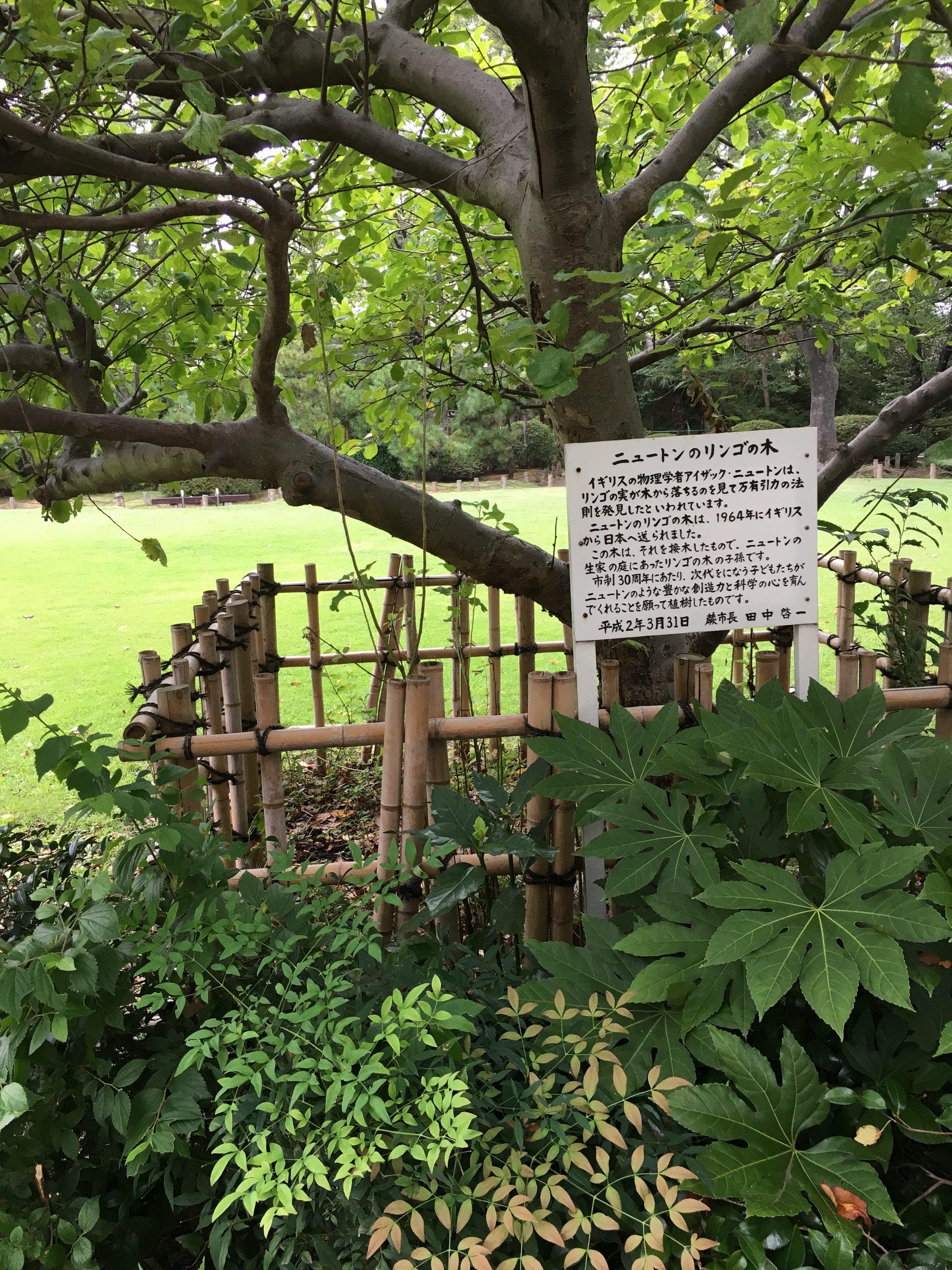 和樂備神社の自然
