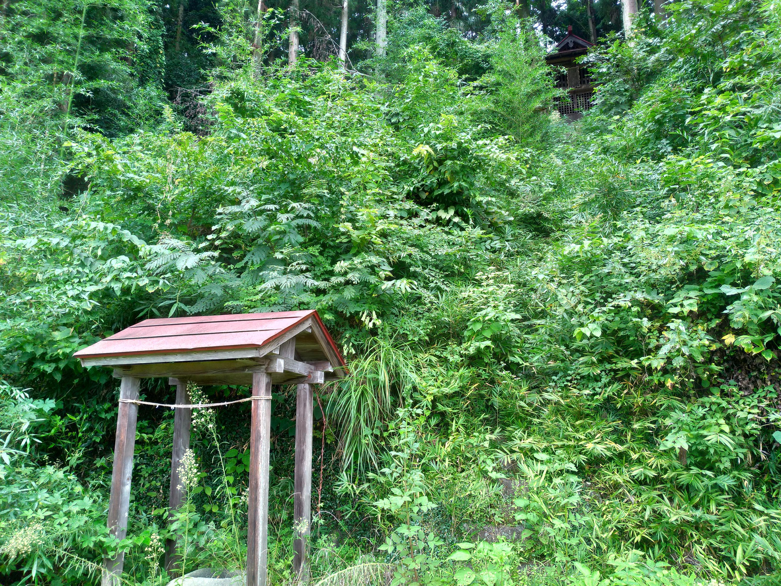 波古曽神社の建物その他