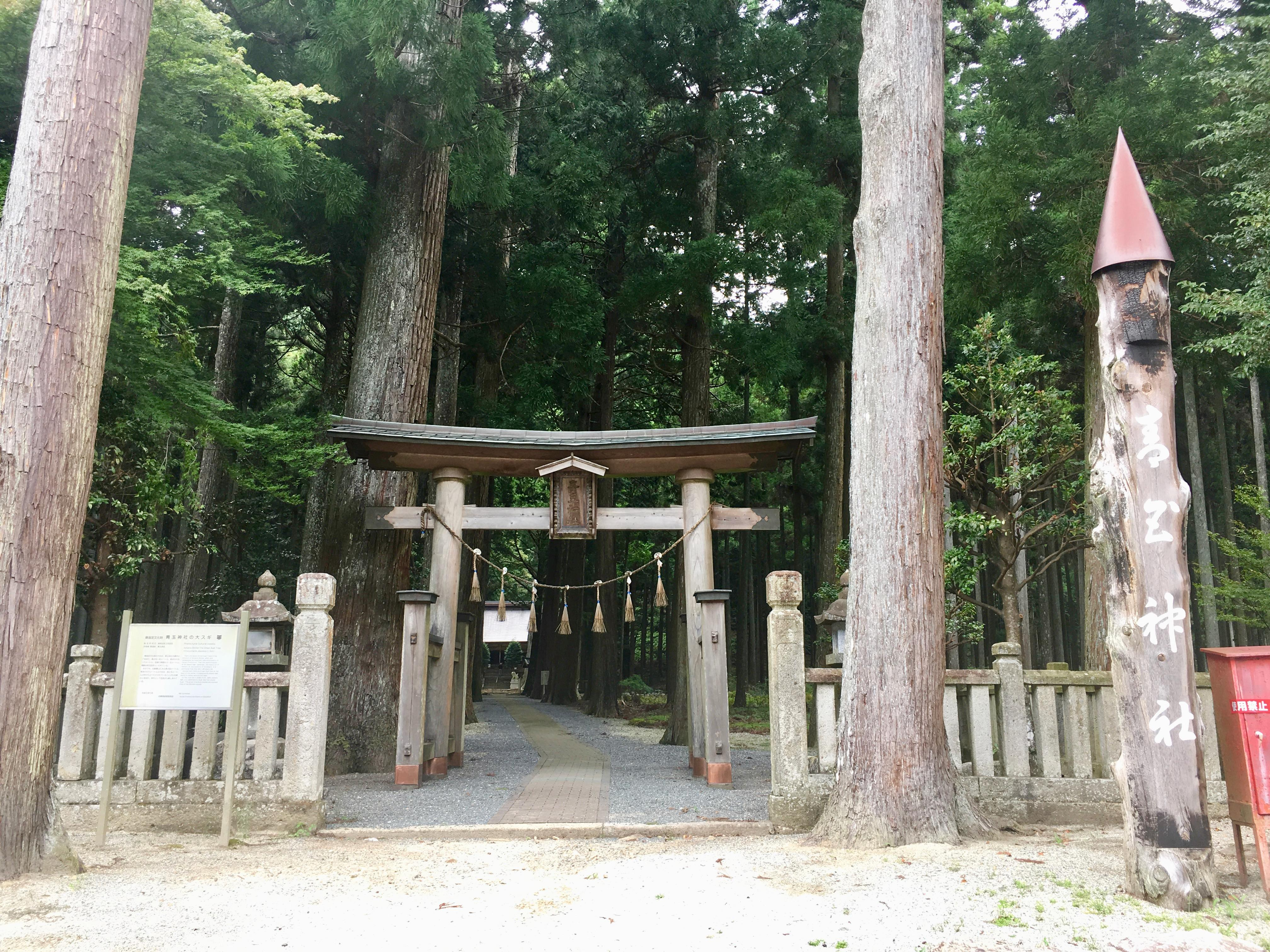 青玉神社の鳥居