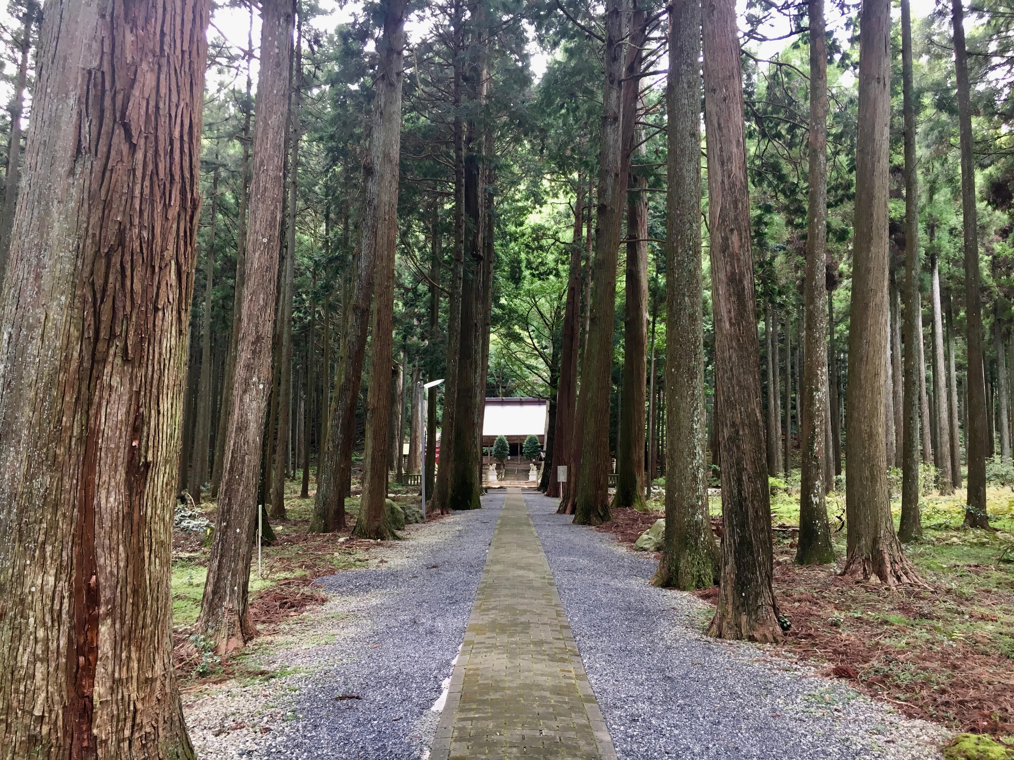 青玉神社の建物その他