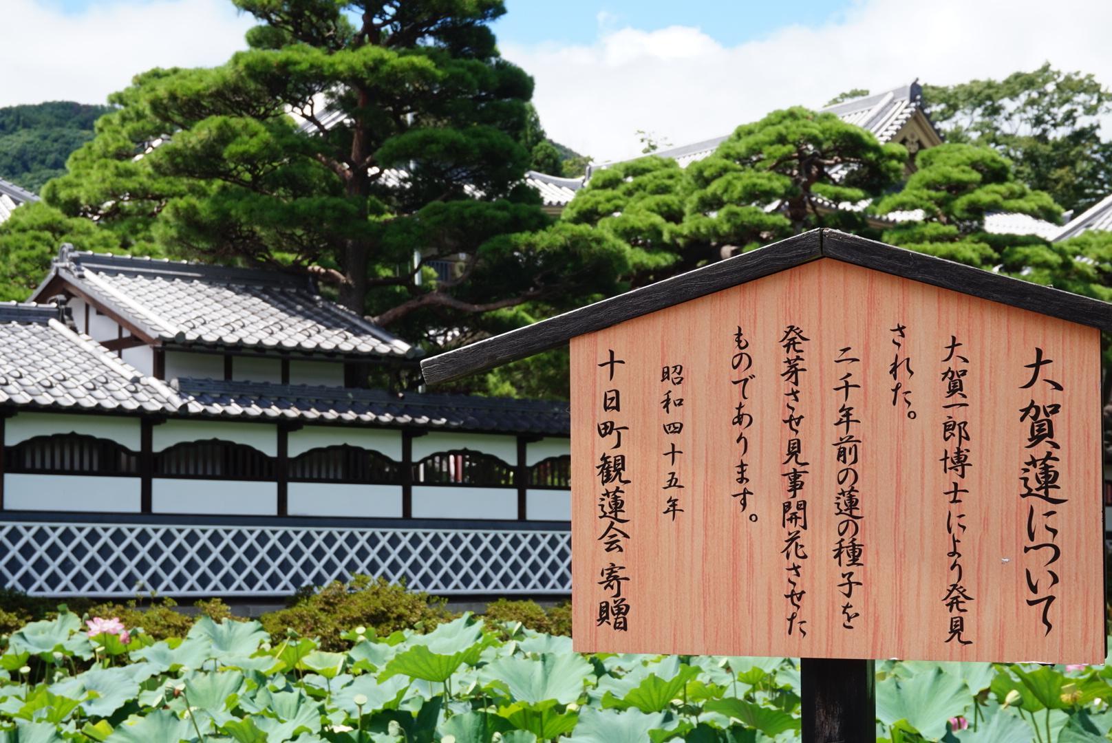 善光寺の歴史