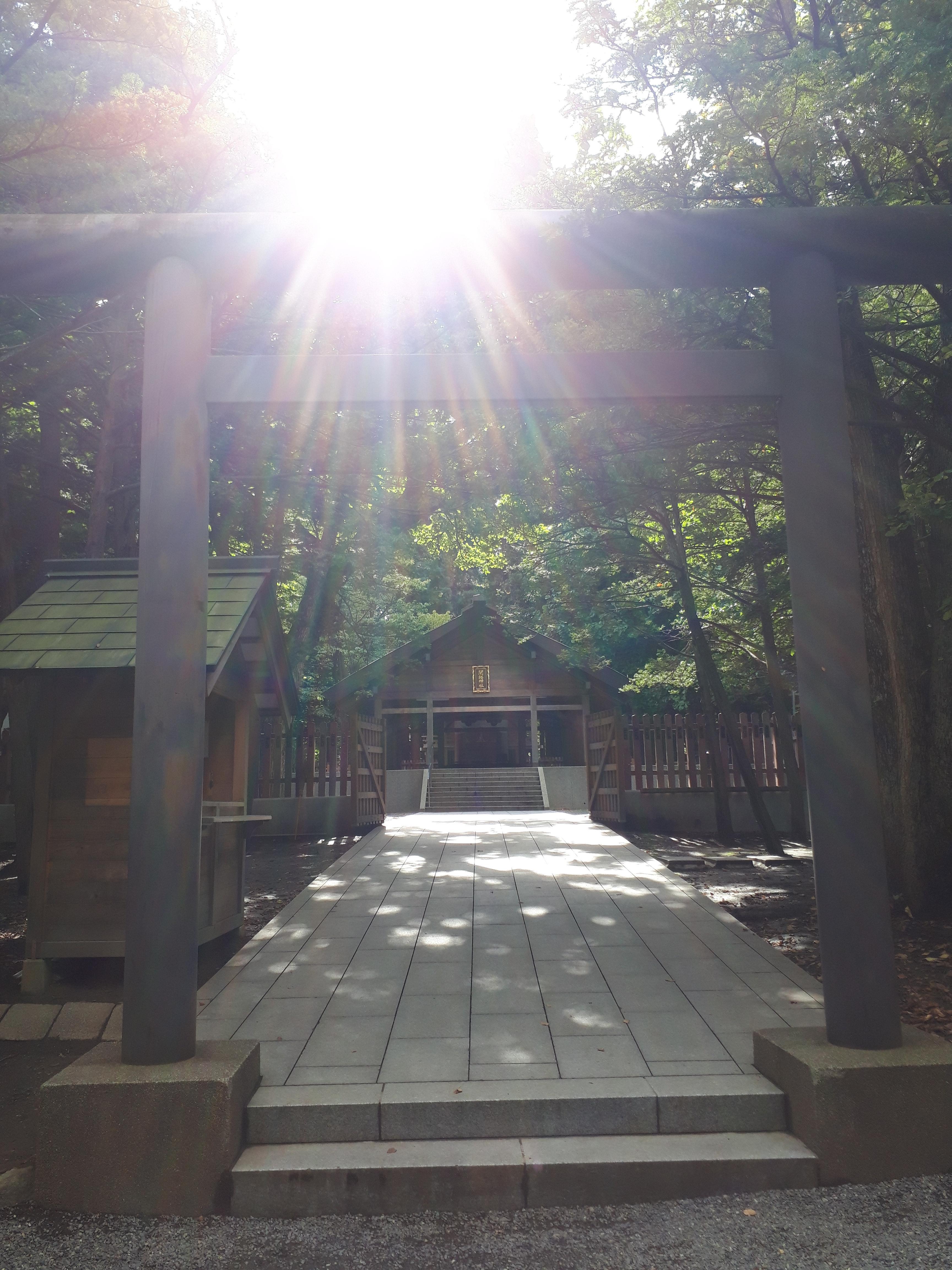 開拓神社の鳥居