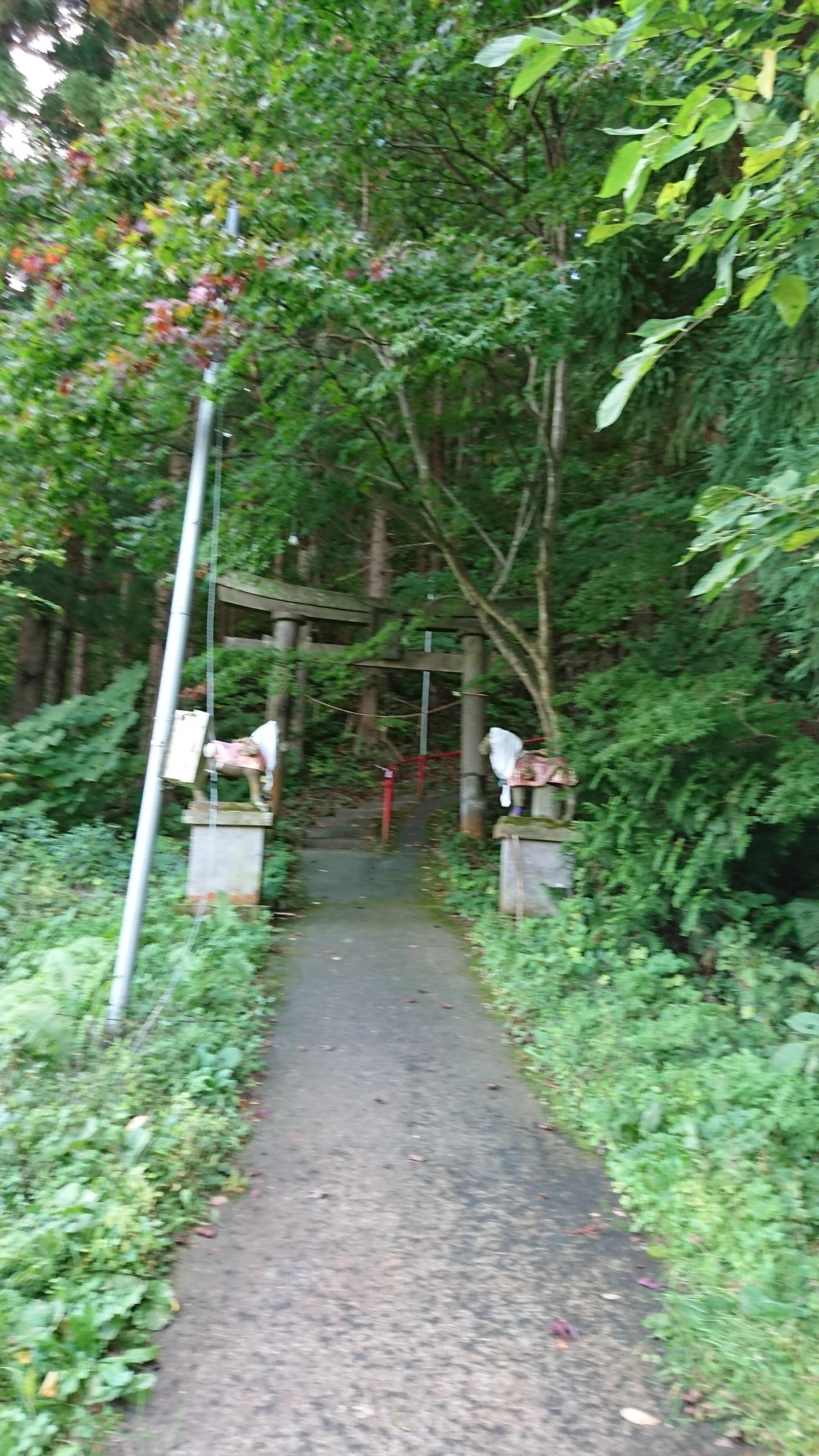 白山姫神社の建物その他