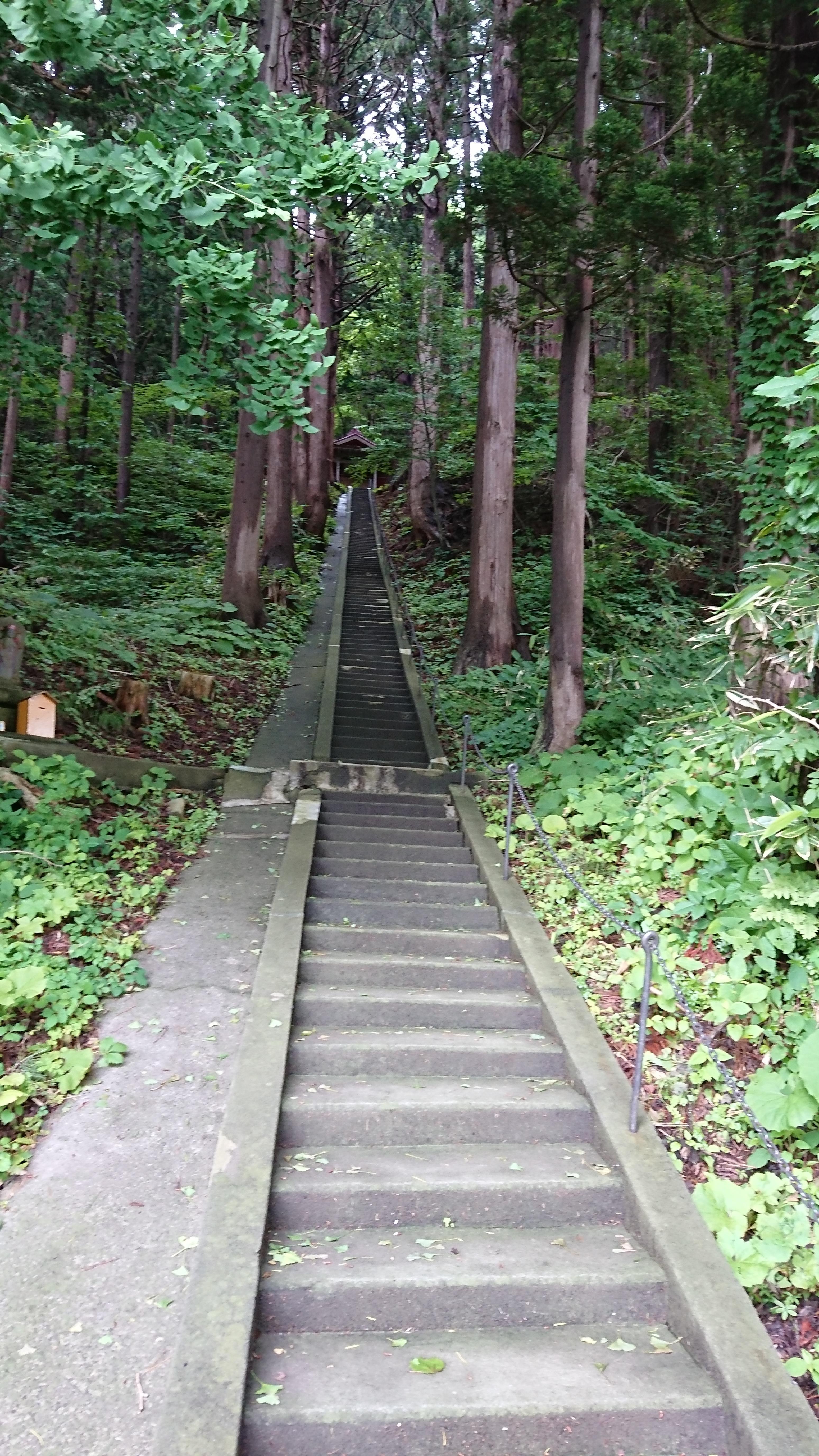 高倉神社の建物その他