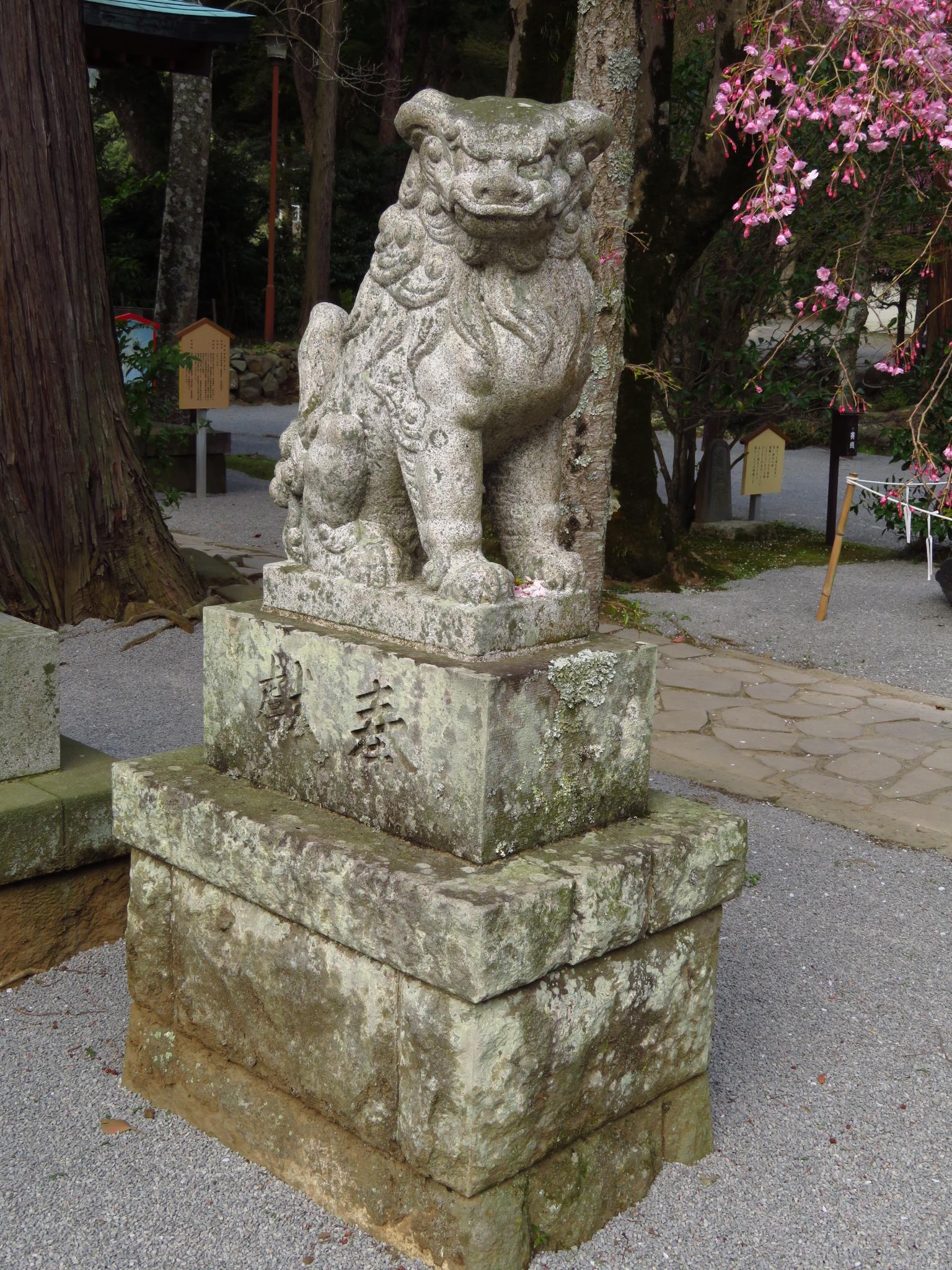 伊豆山神社の狛犬