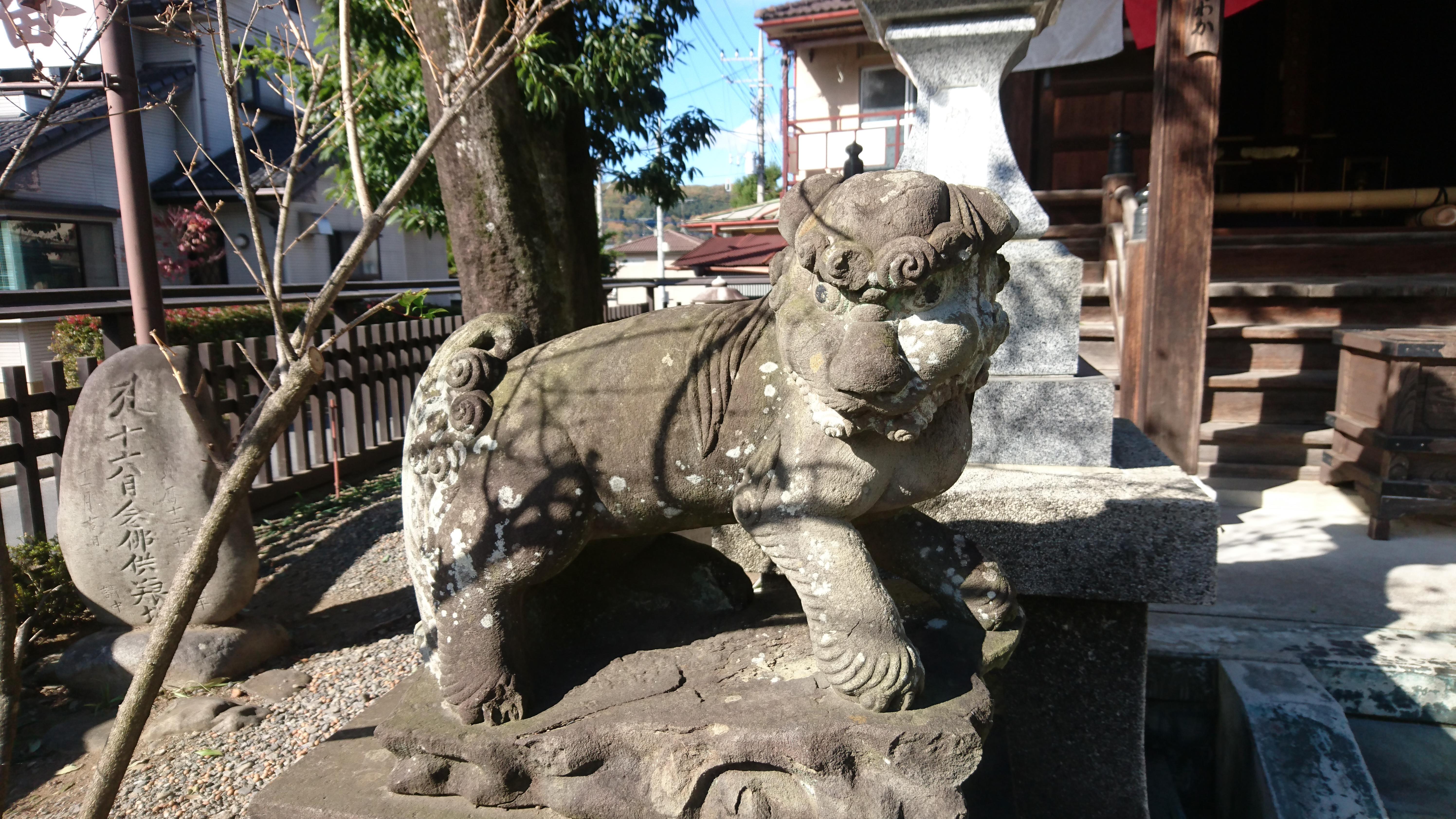 長岳山 今宮坊の狛犬