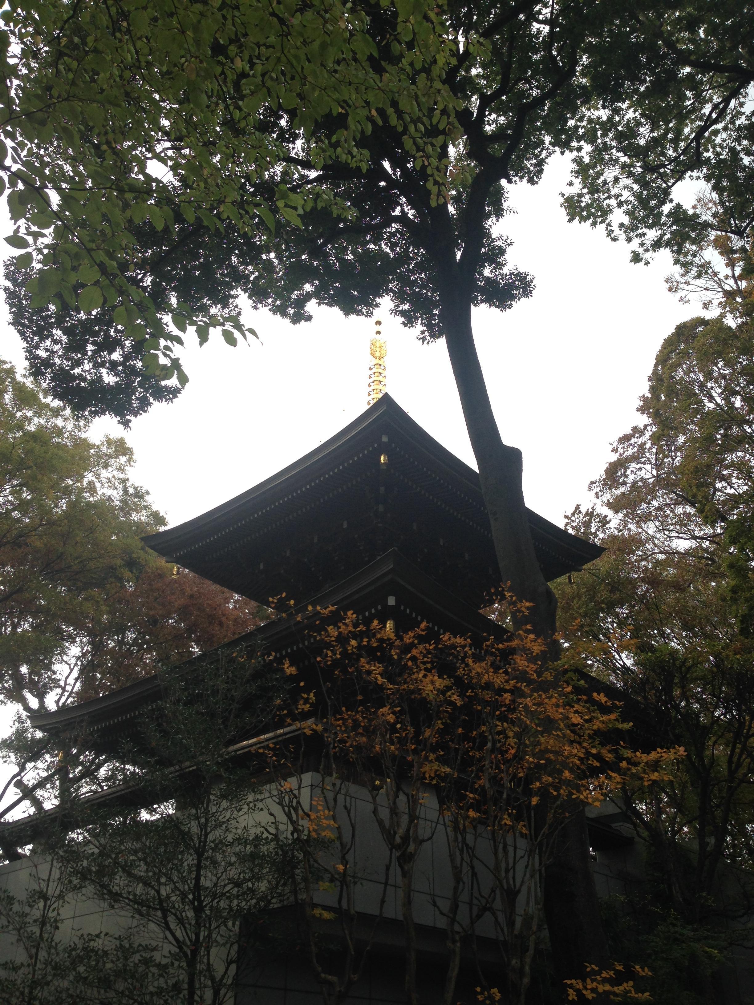 安養院の塔