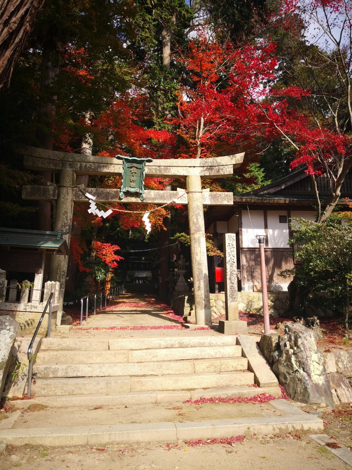 久佐々神社の鳥居