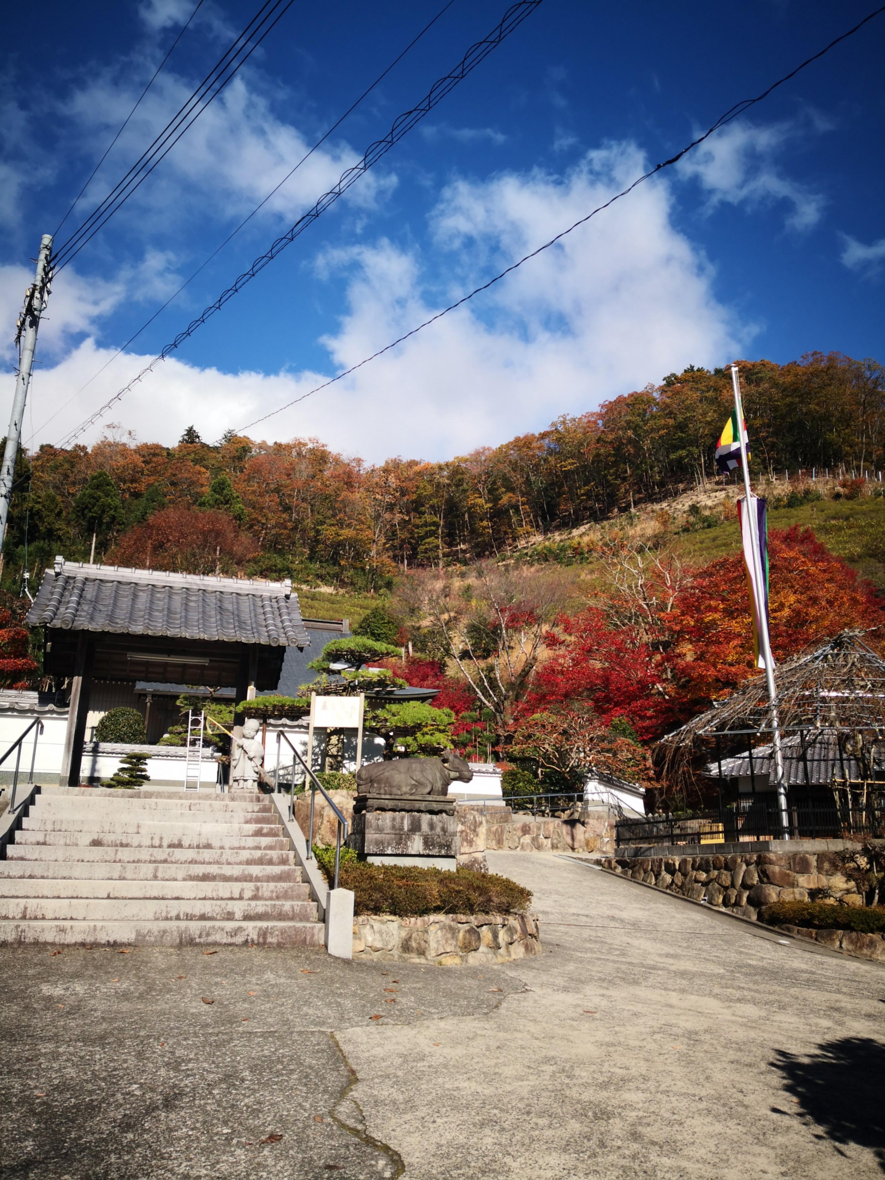 桂林寺の周辺