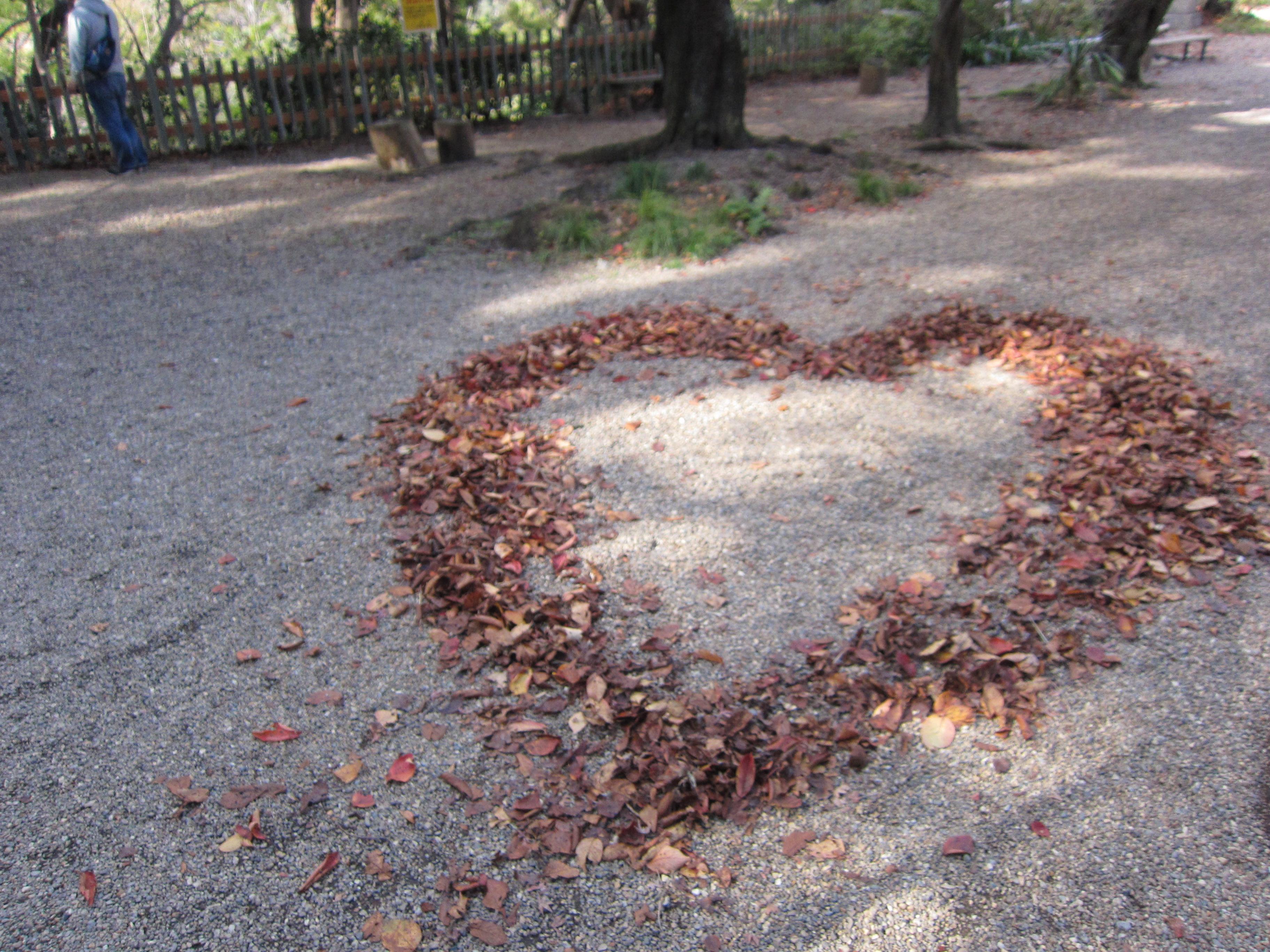 石清水八幡宮の庭園