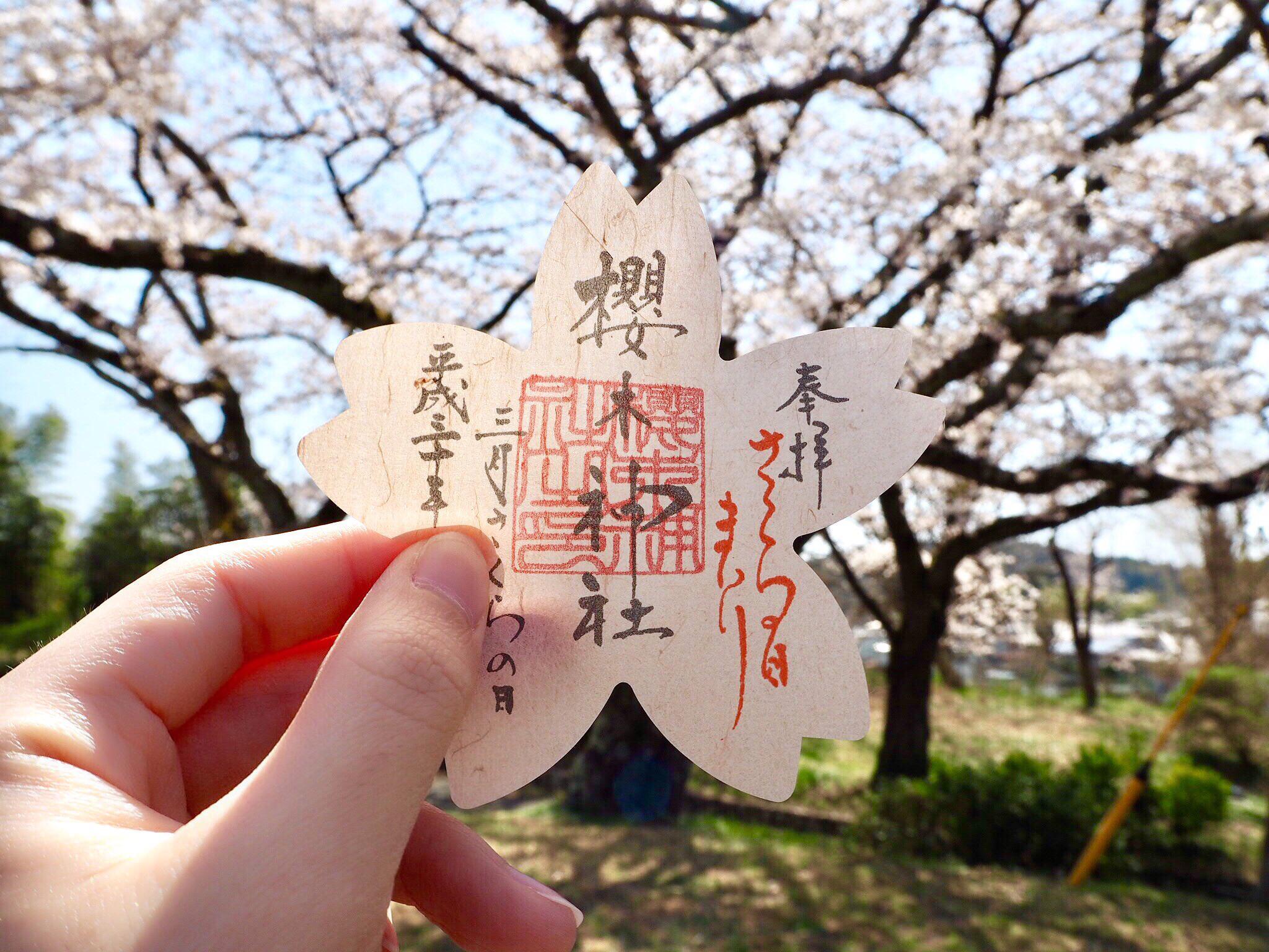 櫻木神社の御朱印