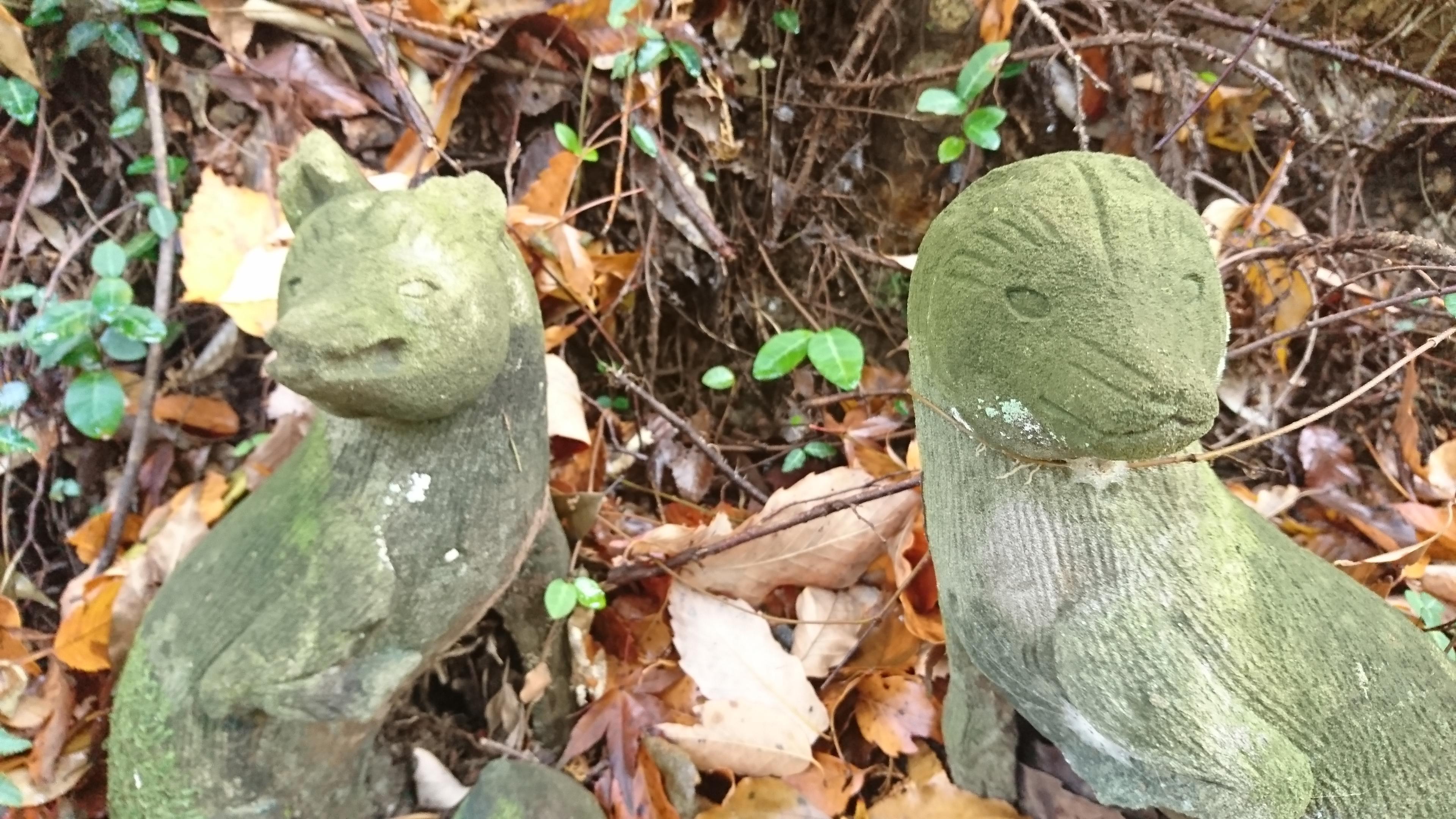 菅東山出世稲荷神社の狛犬