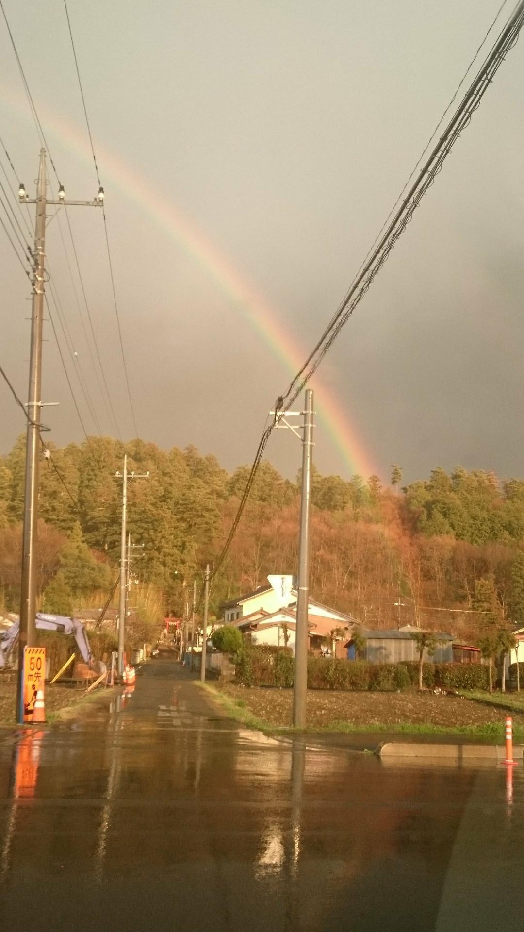 菅東山出世稲荷神社の自然