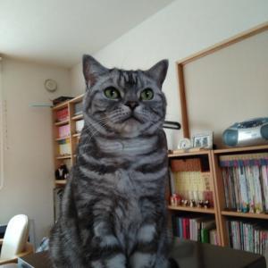 ユキさんのプロフィール画像