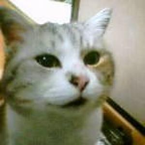 naninanさんのプロフィール画像