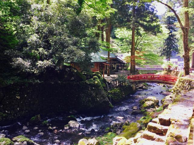 永平寺の自然