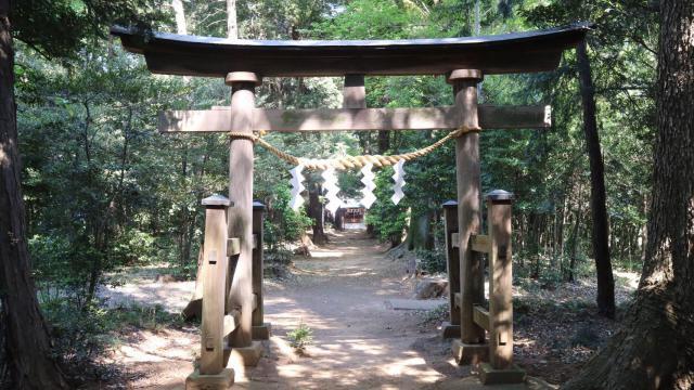 埼玉県尾崎神社の鳥居