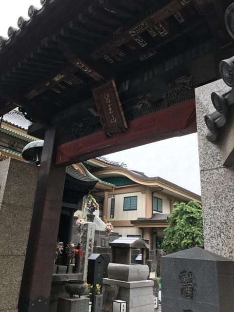 東京都眞性寺の山門