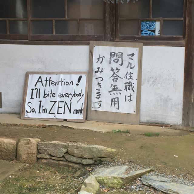 瑠璃光寺の近くの神社お寺|洞春寺