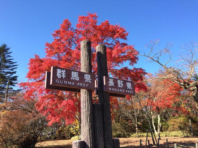 群馬県熊野神社の写真