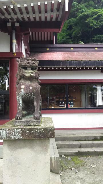鹿児島神社の狛犬