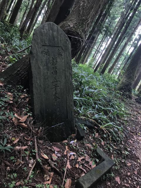 千葉県白鳥神社の建物その他