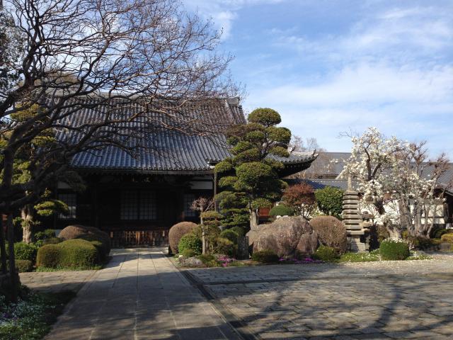 東京都松月院の写真