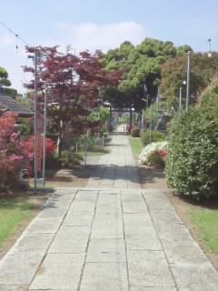 境香取神社の自然