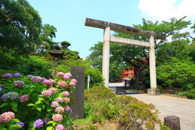 千葉神社の鳥居