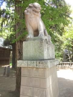金村別雷神社の狛犬