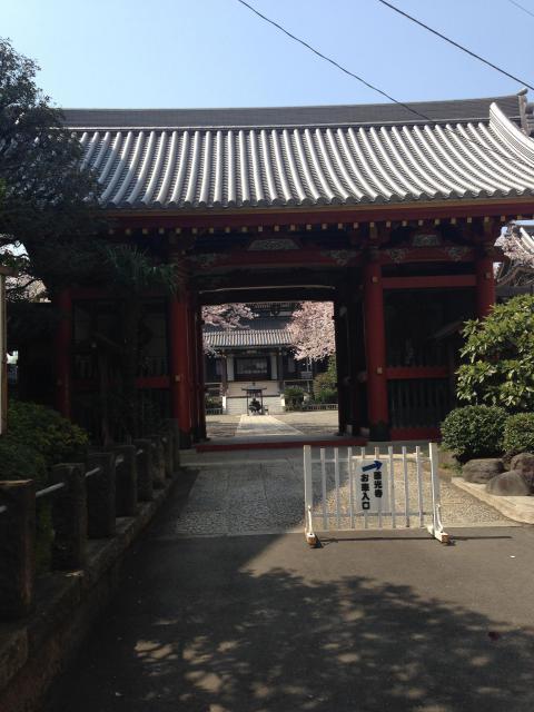 東京都善光寺の山門