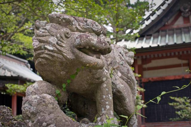 筑波山神社の狛犬