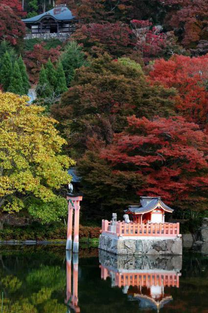 勝尾寺の景色
