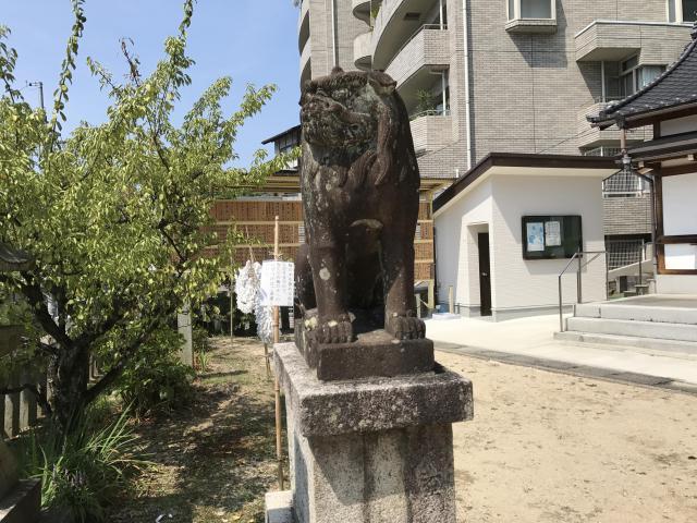 尾長天満宮(広島県広島駅) - 狛犬の写真
