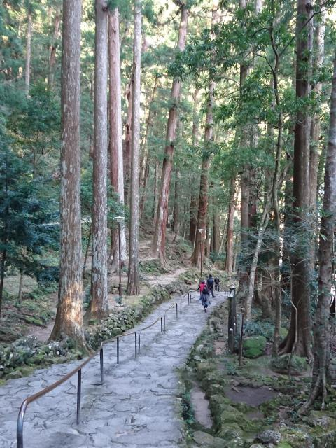 飛瀧神社の建物その他