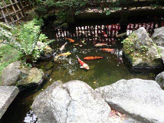 水鏡天満宮の庭園
