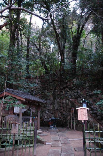 長楽寺の自然