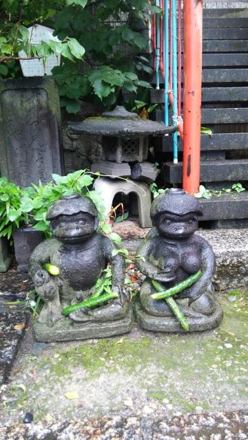 東京都曹源寺の動物