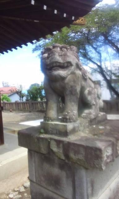富士浅間神社の狛犬
