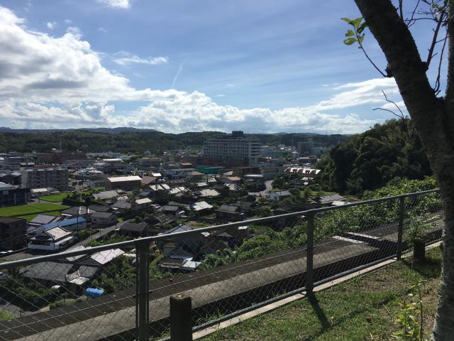 新川稲荷神社の景色