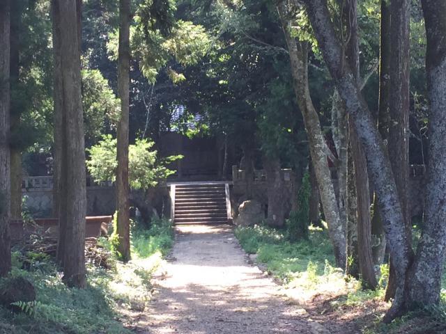 小富士山神社の自然
