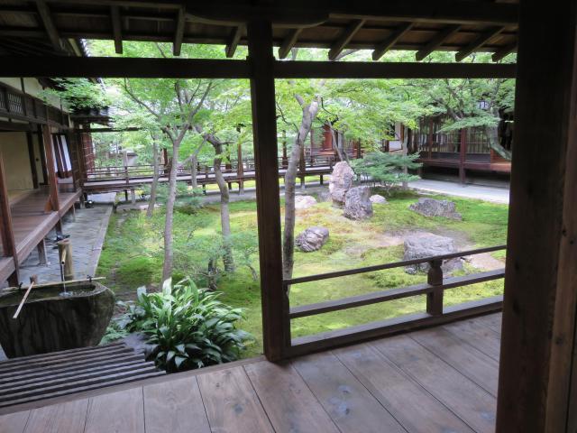建仁寺の自然