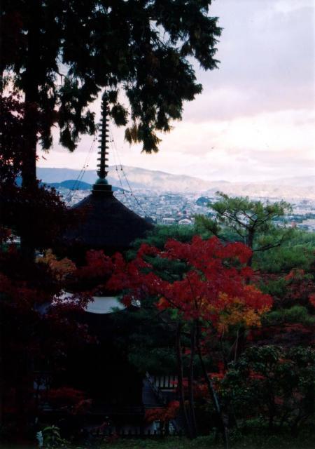 常寂光寺の景色