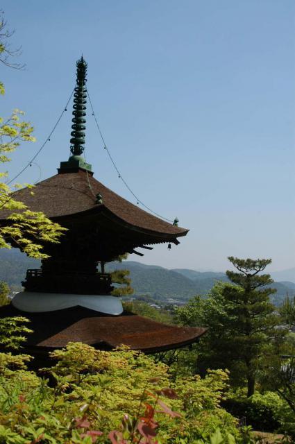 常寂光寺の塔