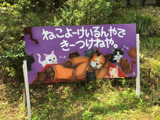 福井県御誕生寺の写真