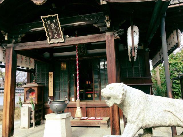 両足院(建仁寺塔頭)の狛犬