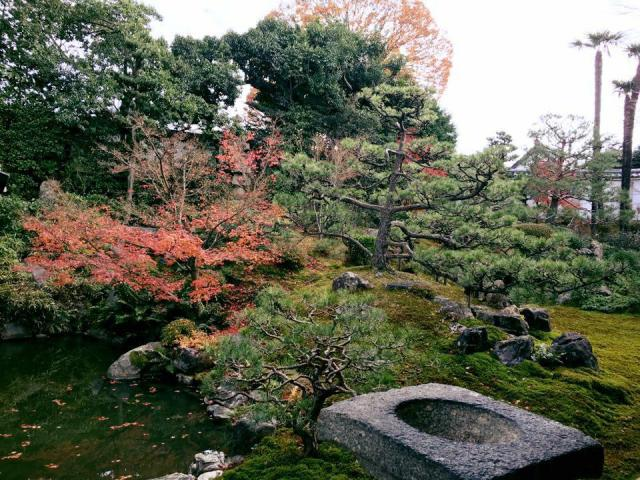 両足院(建仁寺塔頭)の庭園