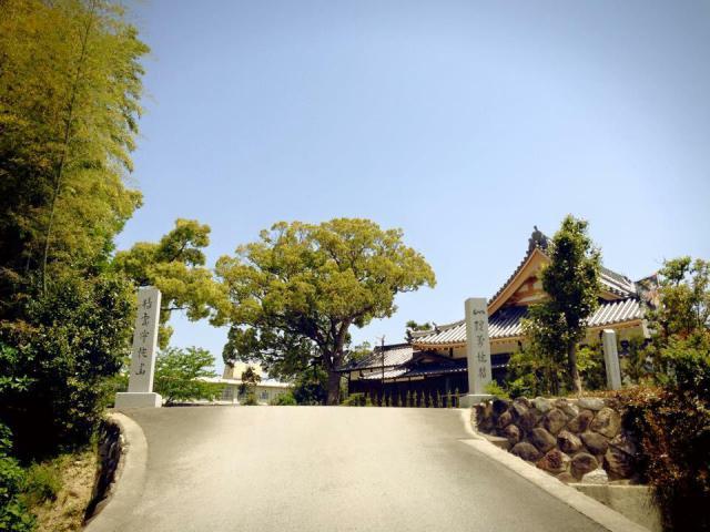 観音寺の建物その他