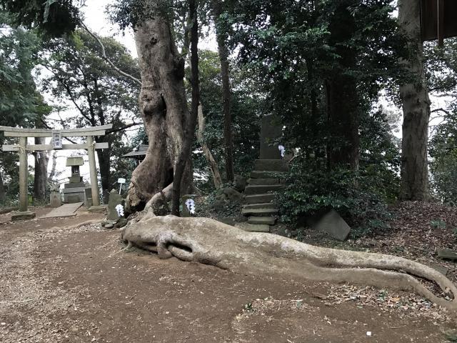 千葉県赤城神社の鳥居