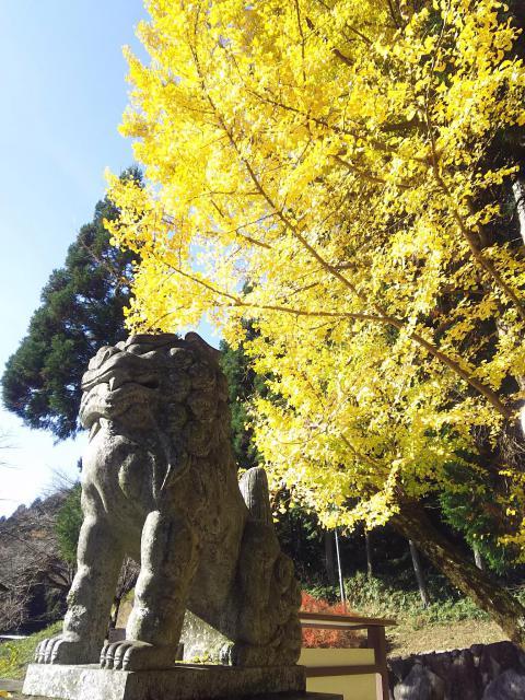 岐阜県高賀神社の狛犬